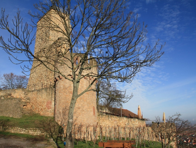 Castle ruins overlook Wachenheim, Pfaltz, Germany